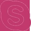 skype-100 80